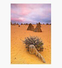 Pinnacles Solitude Photographic Print