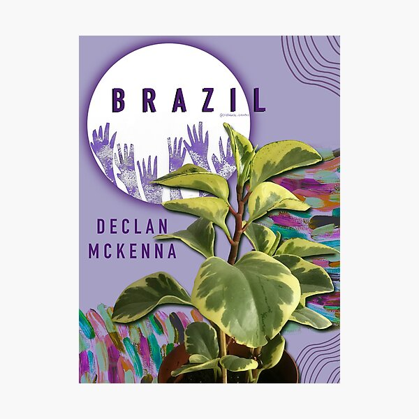Brazil by Declan Mckenna Photographic Print