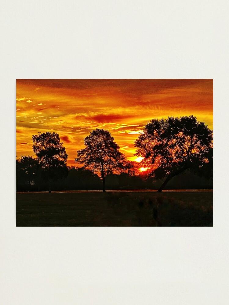 Alternate view of Golden sunrise  Photographic Print