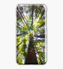 Redwoods Mk II iPhone Case/Skin