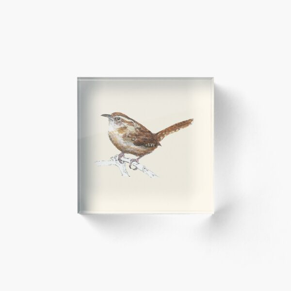 Carolina Wren Acrylic Block