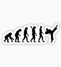 Evolution Karate kickboxing Sticker