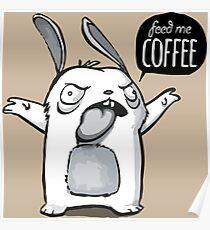 Feed me Coffee Cartoon Bunny Poster