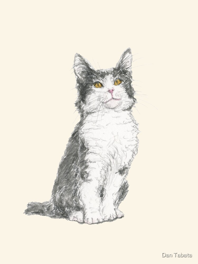 Kitty by Dan Tabata