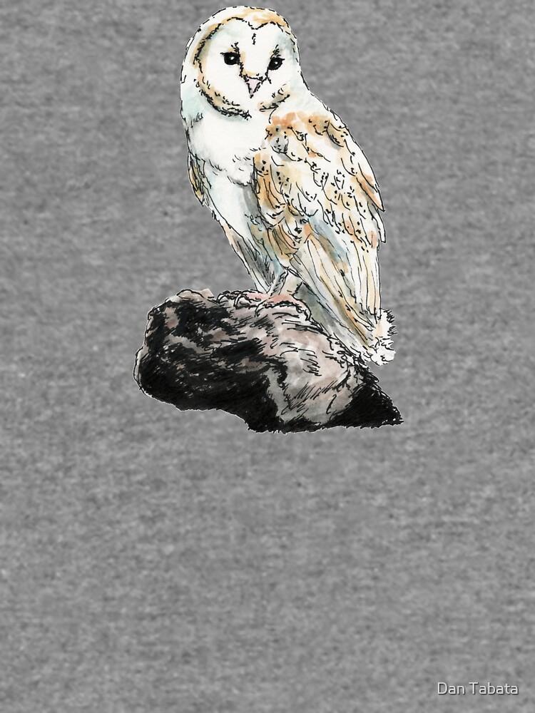 Barn Owl by dmtab