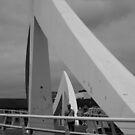 The Tradeston Bridge  by liza1880