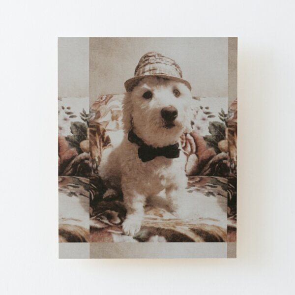 Proper Pup Wood Mounted Print