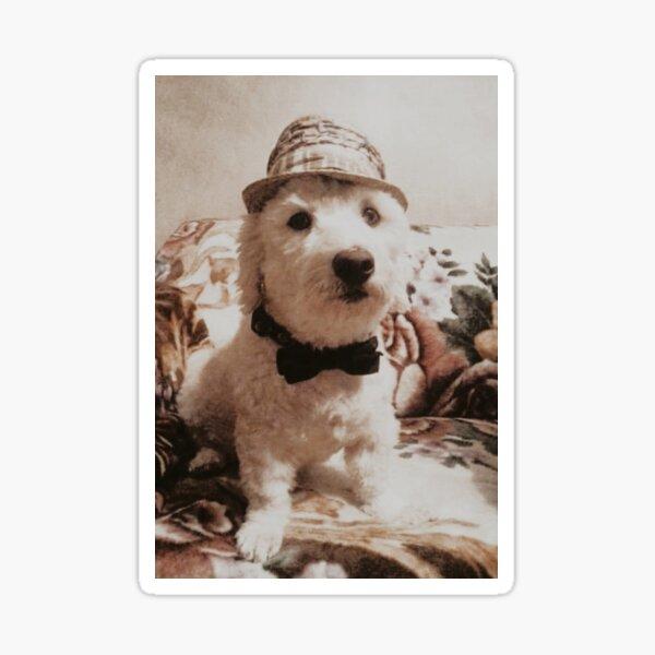 Proper Pup Sticker