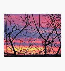 Colorful December Evening Photographic Print