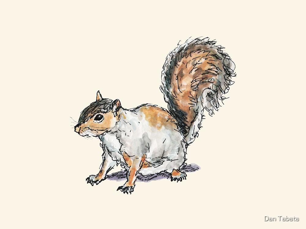 Ready, Set, Squirrel! by Dan Tabata