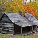 """Noah """"Bud"""" Ogle Cabin by Terri~Lynn Bealle"""
