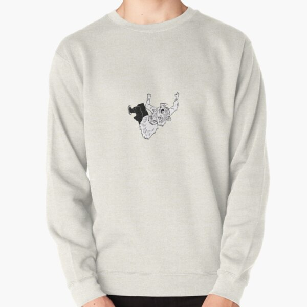 Ceiling Boy Pullover Sweatshirt