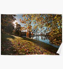 Autumn Sunburst Poster