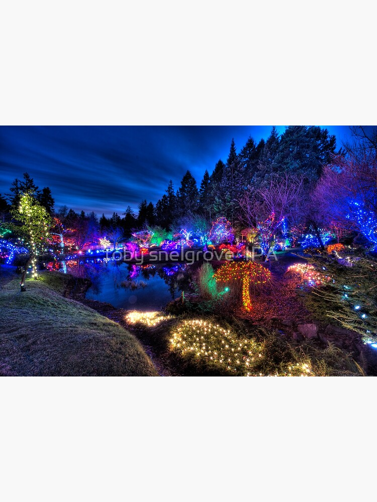 Japanese Garden Christmas Lights, Mayne Island, BC, 2013 by tobysnelgrove
