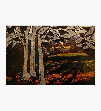 paper trees & pod birds  Photographic Print