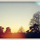 st andrews park sunset by thispace