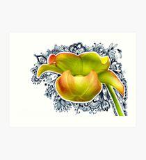 Picture Plant Flower 1 - Photabgle Art Print