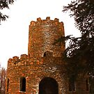 Clinton Castle by Adam Kuehl