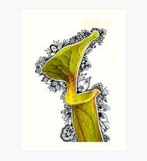 Picture Plant Leaf 1 - Photangle Art Print