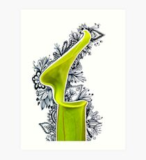Picture Plant Leaf 2 - Photangle Art Print