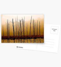 Vernal Postcards