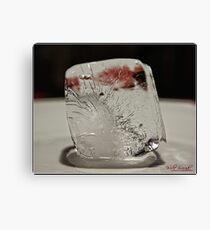 Ice Cube - 3 Canvas Print