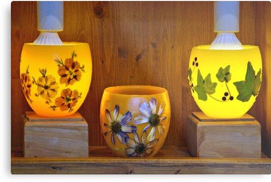 Flowers and light by Arie Koene