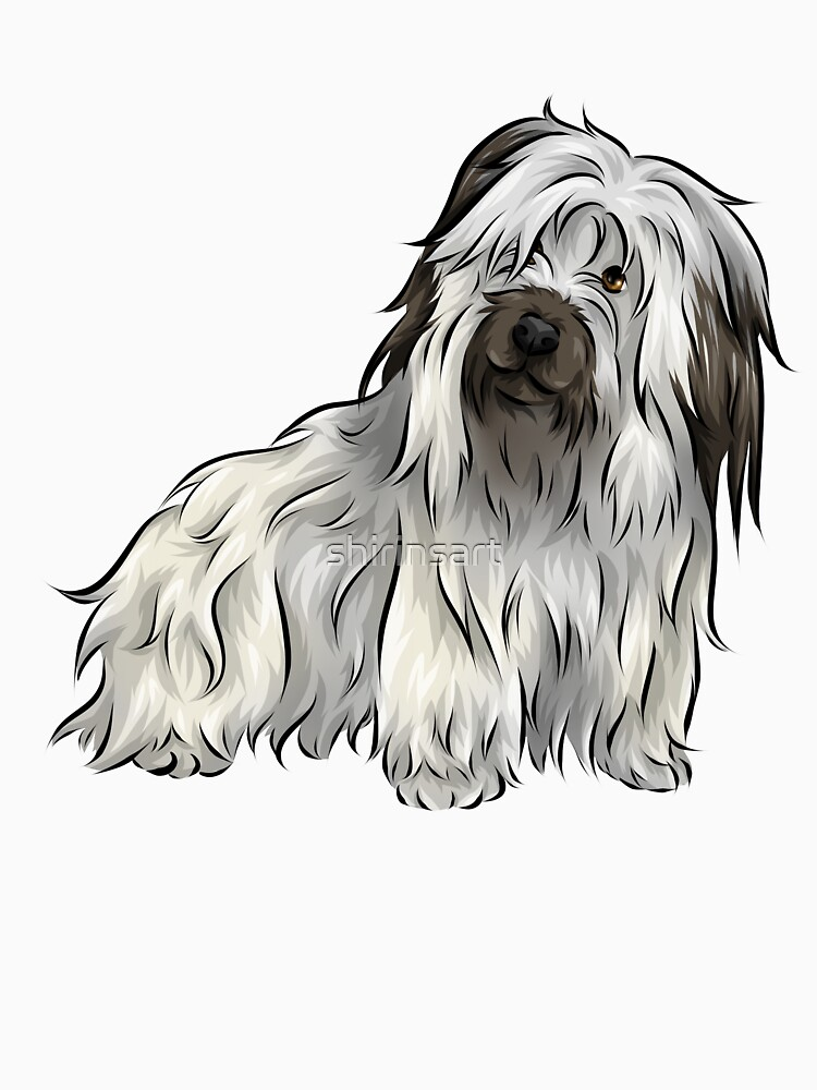 Skye Terrier | Cute Dogs Collection by shirinsart