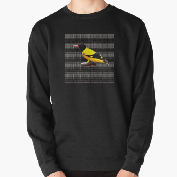 ALL OF THE BIRDS DIED IN 1986 Pullover Sweatshirt