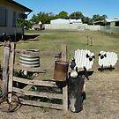 Winton Queensland  by Virginia McGowan