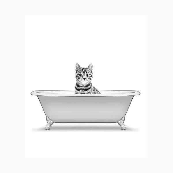 cat, bathroom art, bathroom wall art, bathroom kids art, bathroom decor, bathroom wall decor, animal art, black and white art Photographic Print