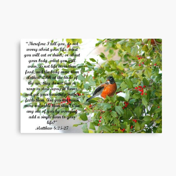 Old Barns with Orioles in Tree Wall Picture 8x10 Art Print