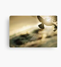 Mockingjay Canvas Print