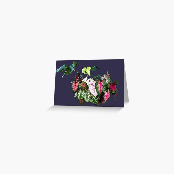 Pleasant tropical breeze Greeting Card