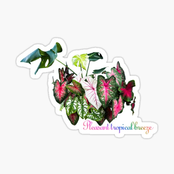 Pleasant tropical breeze Sticker