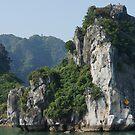 Ha Long Bay, Vietnam by Geoffrey Higges