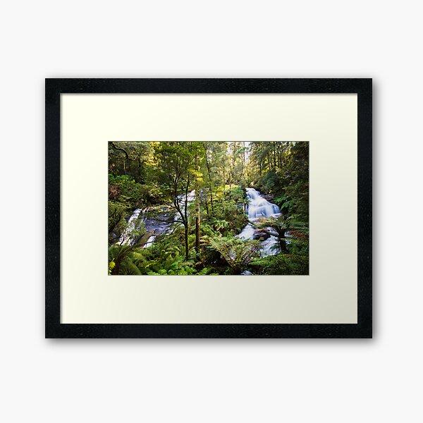 Triplet Falls, Great Otway National Park Framed Art Print