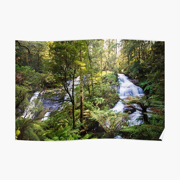 Triplet Falls, Great Otway National Park Poster