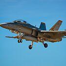 FA-18 Hornet by Chris  Randall