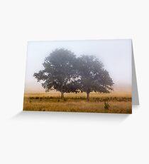 Mornings Mist Greeting Card