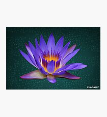 Water Lily Neon Purple and Yellow Colors Natural Photographic Print