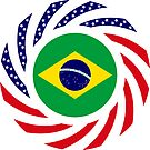 Brazilian American Multinational Patriot Flag Series by Carbon-Fibre Media