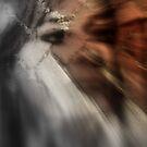 Brick Portrait Windblown by Adrena87