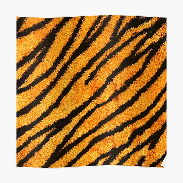 Animal Leather Poster
