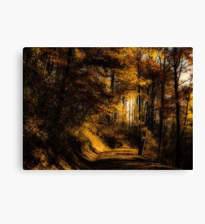 Evening Glow Canvas Print