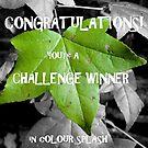green leaf *for banner* by rosaliemcm