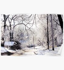 Winter View Poster