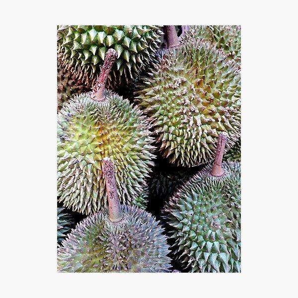 Durian Photographic Print