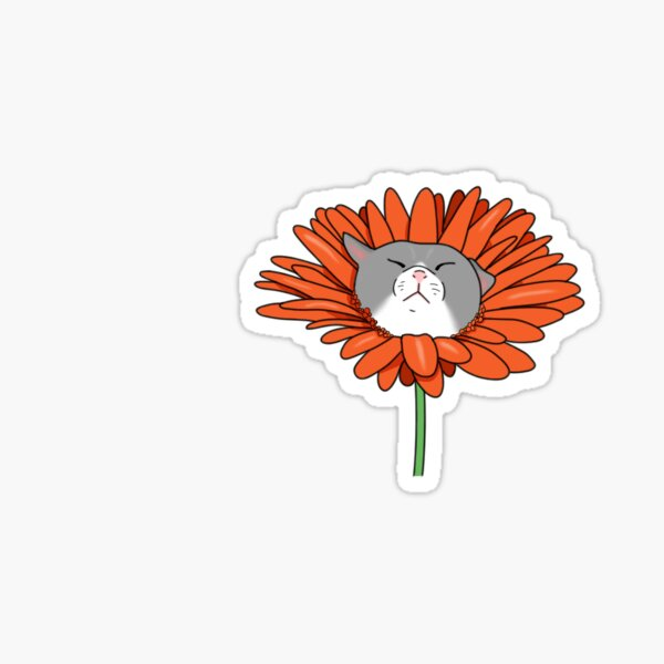 Orange Daisy Cat Sticker