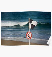 No Surfing - Beachcomber Series Poster